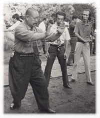 Great Grandmaster Wang Shu-Jin
